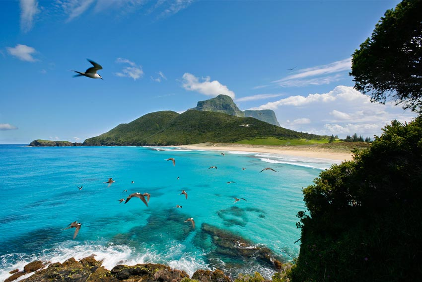 Lord Howe Island the Ultimate Winter Holiday
