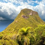 mount-gower-lord-howe05