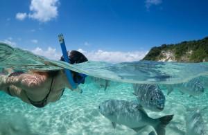 lord-howe-snorkeling01
